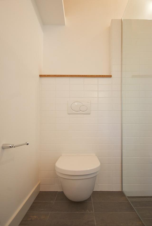 Curbless Shower In Situ